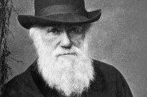 A teoria da evolução e a fé