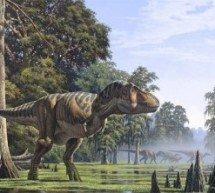 Por que os dinossauros não são mencionados no relato da criação bíblica?