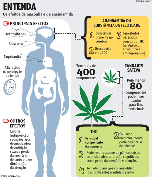 Efeitos a longo prazo do fumo de maconha
