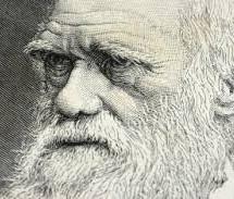 O que é a evolução?