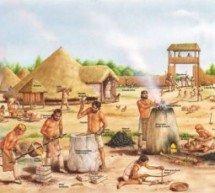Que evidência científica temos sobre os primeiros seres humanos?