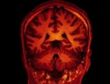 Pesquisadores afirmam que a ciência prova que seu cérebro reconhece a realidade de Deus