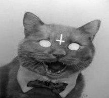 O papa Gregório IX mandou matar milhões de gatos pretos e isto ocasionou a Peste Negra?