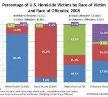 Vamos falar de crimes raciais?